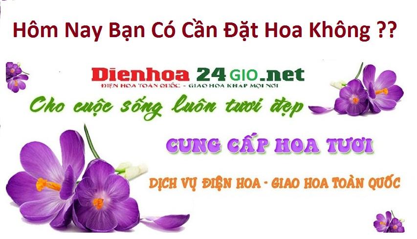 Top 5 cửa hàng hoa tươi Vĩnh Long hoa tươi đẹp rẻ sang điện hoa.
